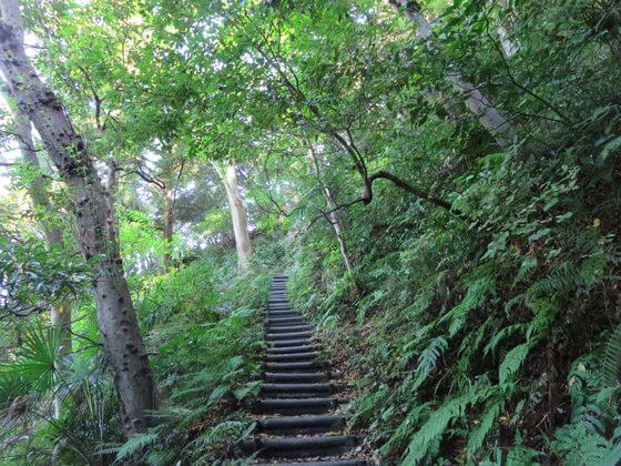 祇園山ハイキングコース 階段