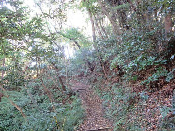 祇園山ハイキングコース1