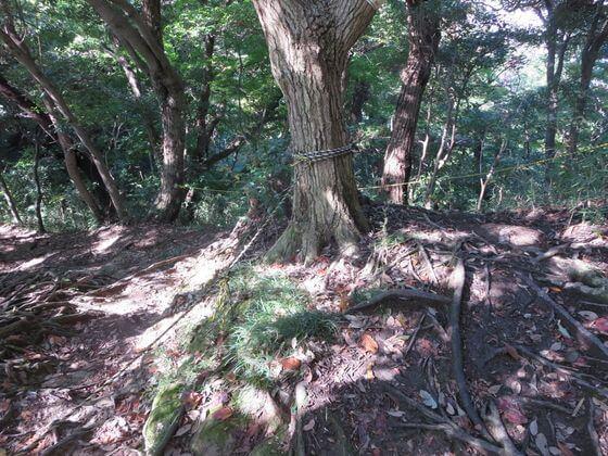 祇園山ハイキングコース3