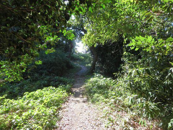 祇園山ハイキングコース8