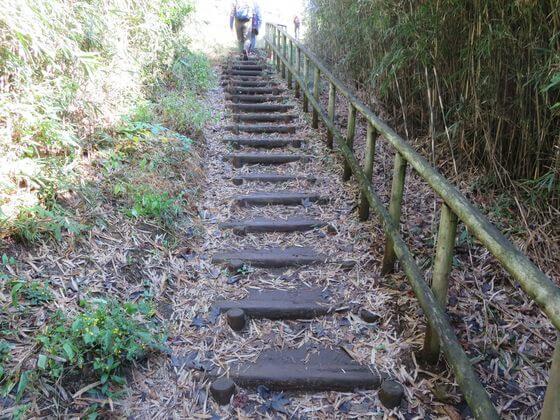 六国見山 階段2