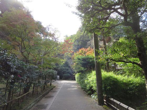 浄智寺 道2