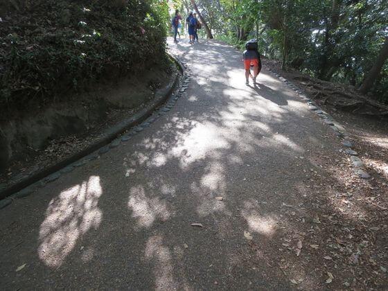 源氏山公園 道