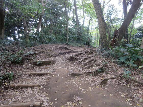 大仏ハイキングコース6