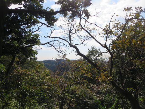 大仏ハイキングコース 景色2