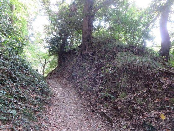 大仏ハイキングコース11