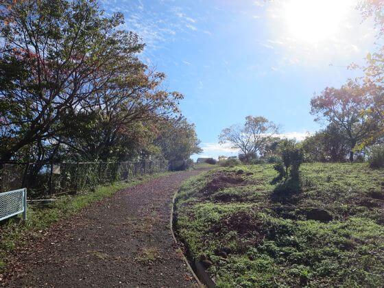 衣張山ハイキングコース8