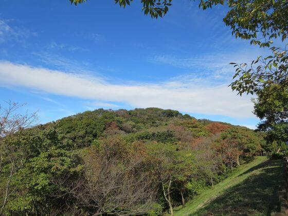 衣張山ハイキングコース9