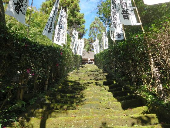 杉本寺 苔階段