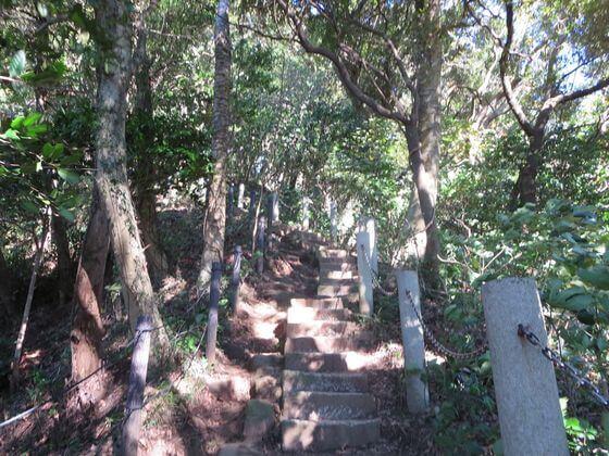 天園ハイキングコース 階段