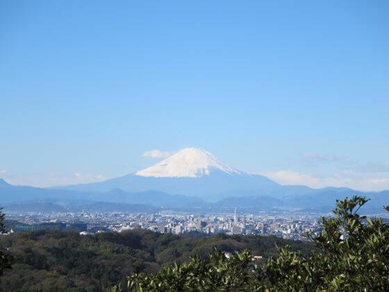 勝上献展望台 富士山