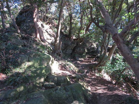 天園ハイキングコース2