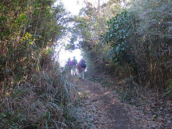 天園ハイキングコース3