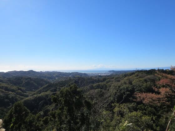 大平山 相模湾