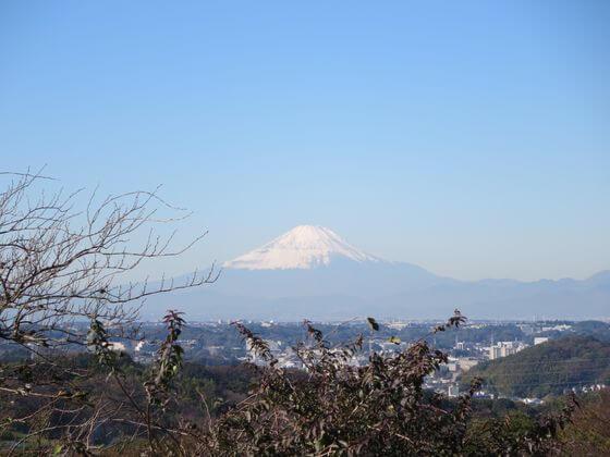 円海山関東の富士見百景 富士山