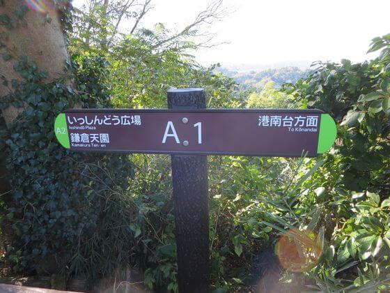 円海山 A1