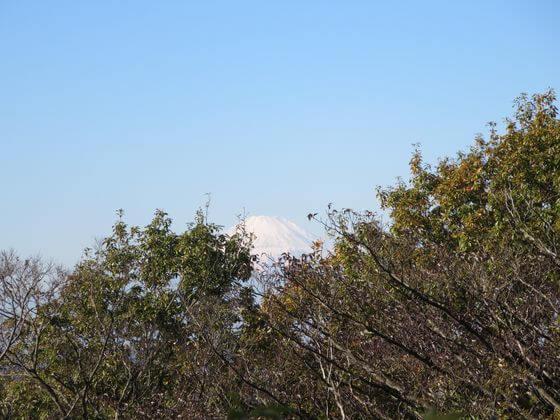 いっしんどう広場 富士山
