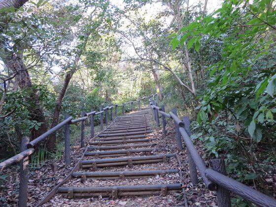 大丸山 階段2