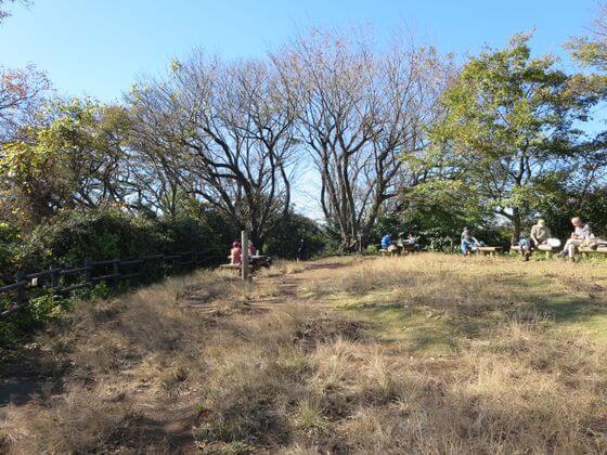 大丸山 山頂 ピクニック