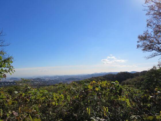 大丸山 山頂 景色