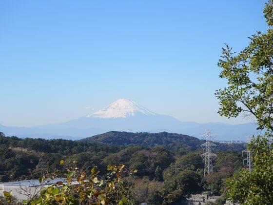 コナラの道16 富士山