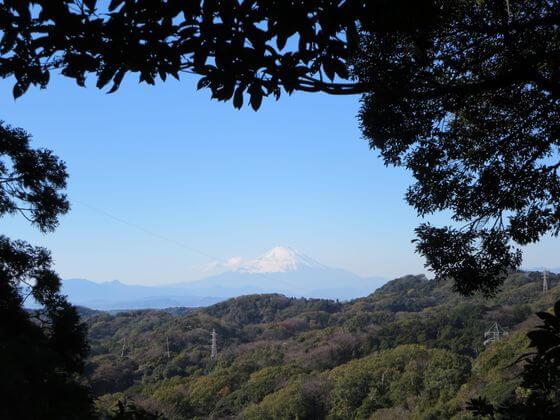天園ハイキングコース 富士山