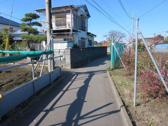 長津田 畑道