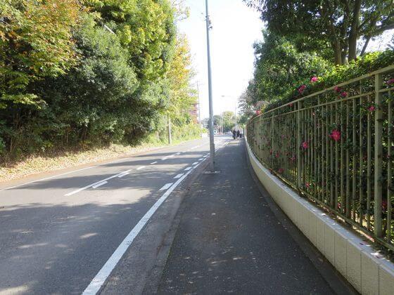 森村学園 道路