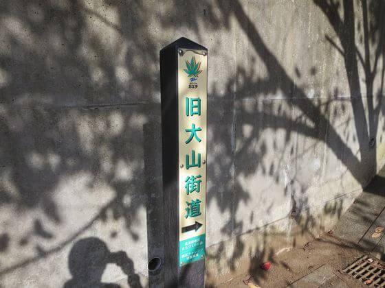 旧大山街道 案内杭