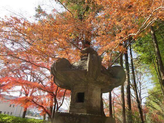 能仁寺 石灯籠 紅葉