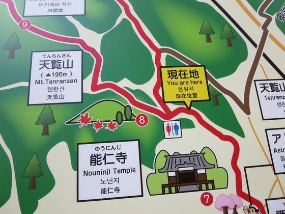 天覧山 広場 地図