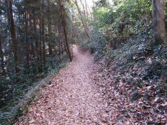 多峯主山 山道3