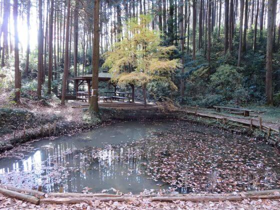 多峯主山 雨乞い池