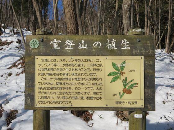 宝登山の植生 説明版