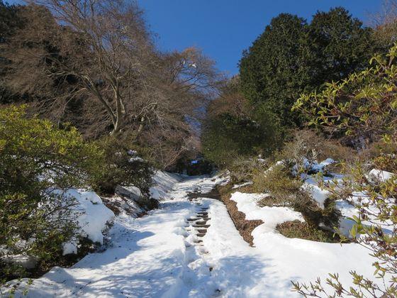 宝登山神社 奥宮 階段