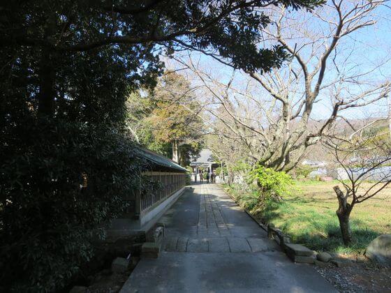 河津来宮神社 参道