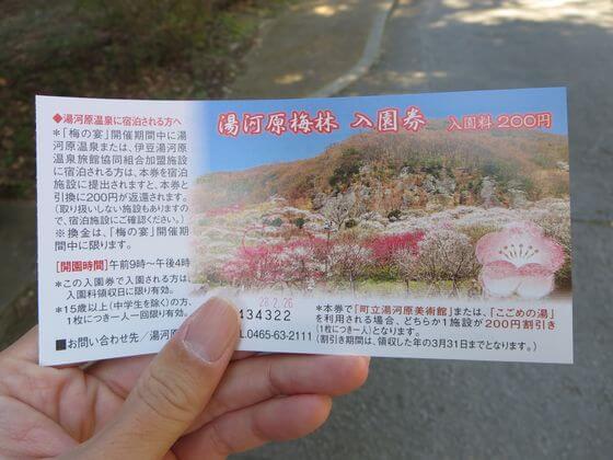 湯河原梅林 入園チケット
