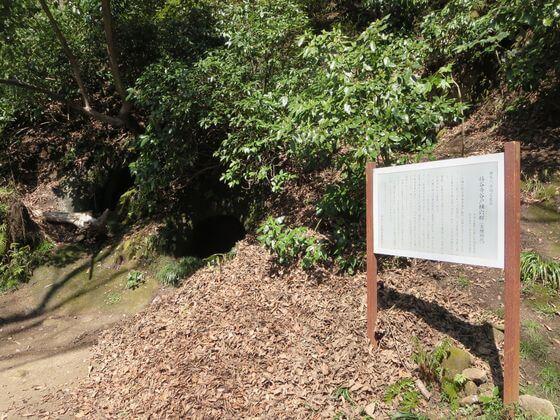 楊谷寺横穴墓群2