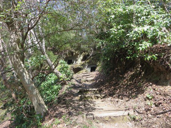 楊谷寺横穴墓群4