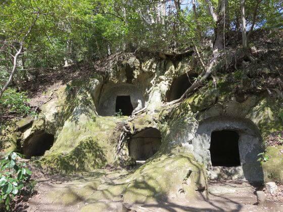 楊谷寺横穴墓群5
