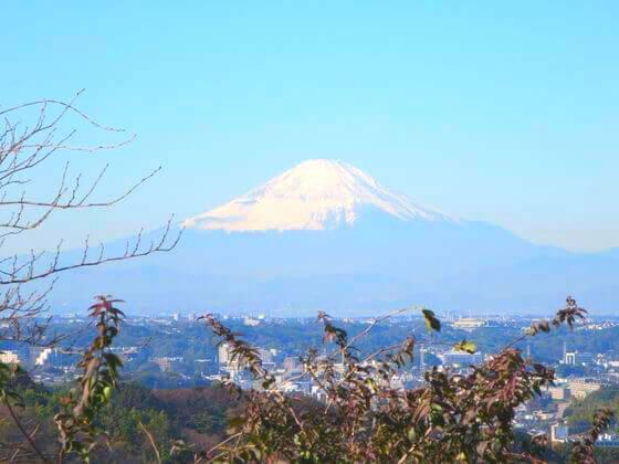 円海山ハイキングコース