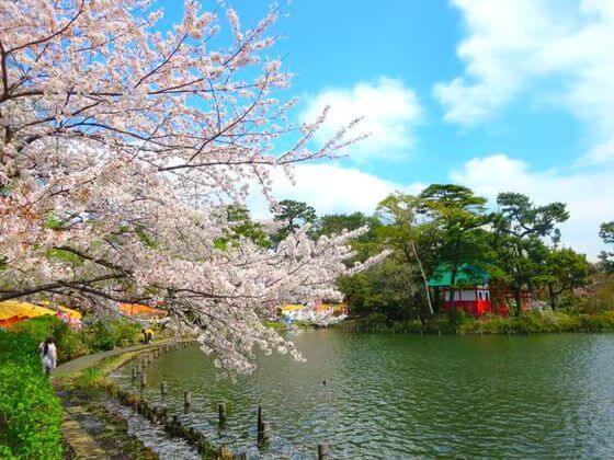 洗足池公園 弁天島