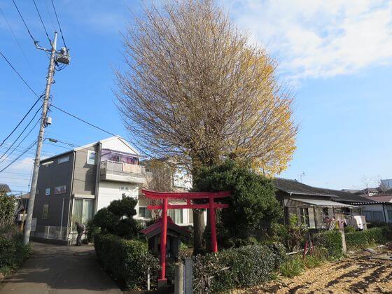 町田フットパス 成瀬 金森