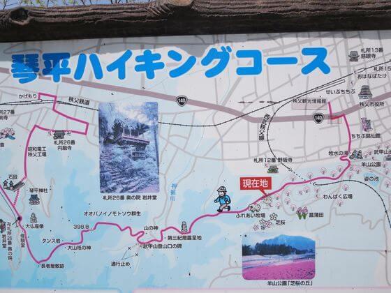 琴平丘陵 ハイキング
