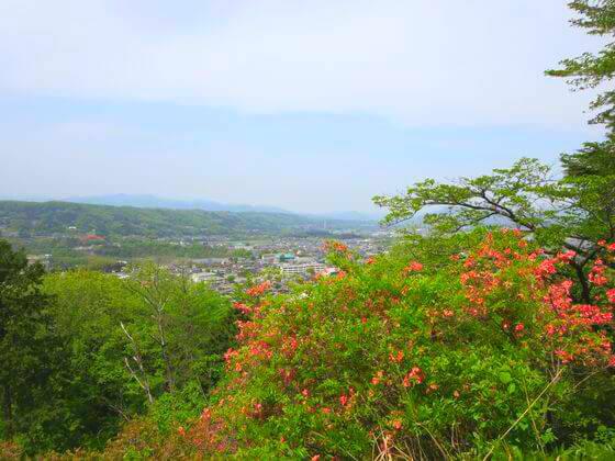 琴平丘陵ハイキングコース