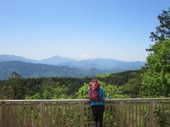 高尾山 景信山
