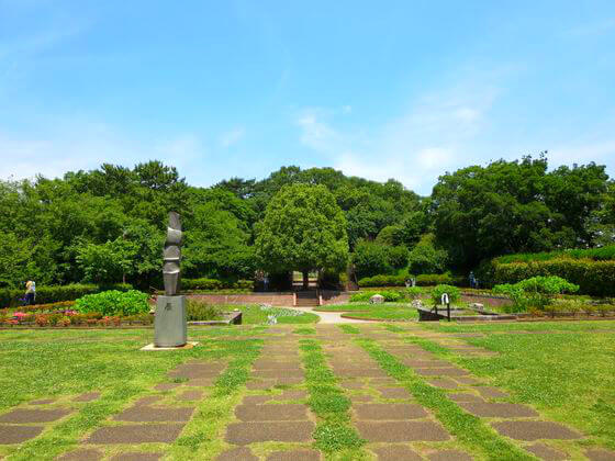四季の野草園