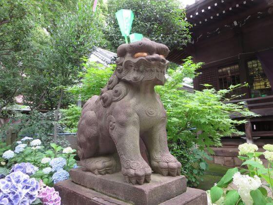 白山神社 狛犬 左