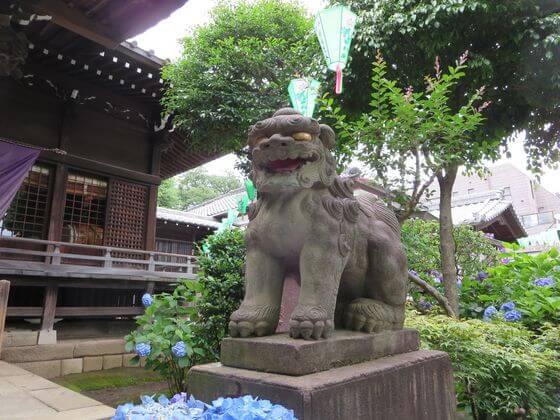 白山神社 狛犬 右