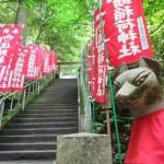 鎌倉・佐助稲荷神社の御朱印とご利益は?